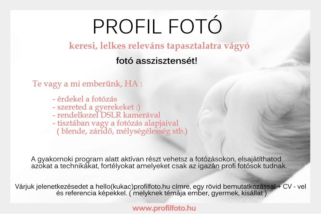 Profil Fotó_gyakornok